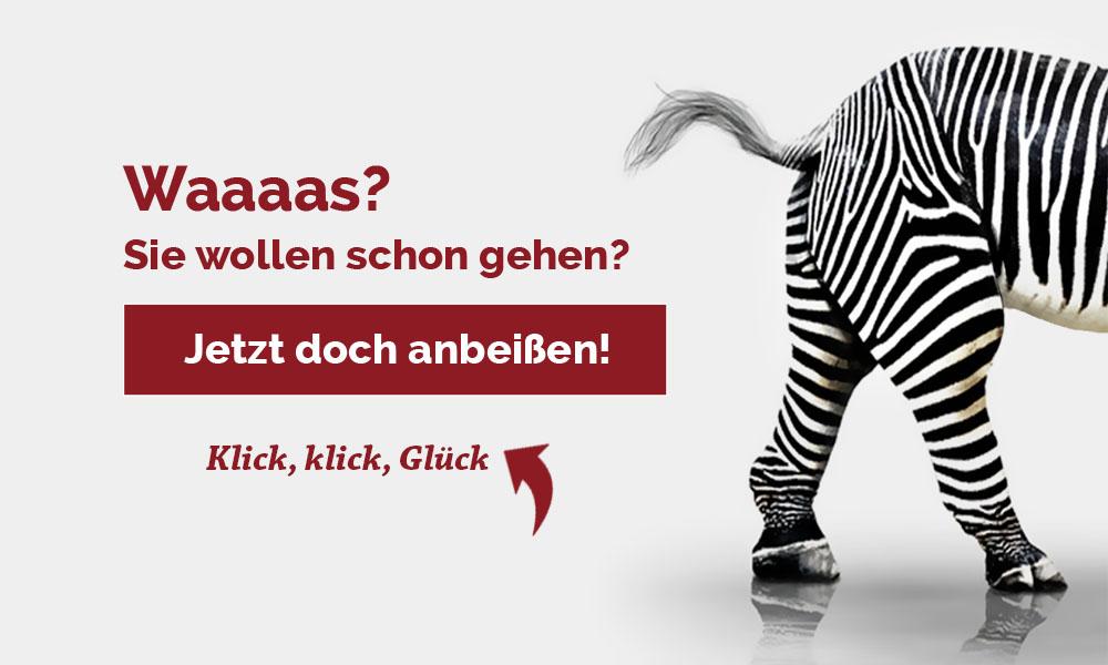 Zebra geht raus